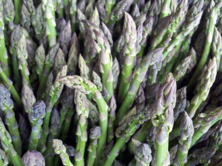 asparagus-smaller